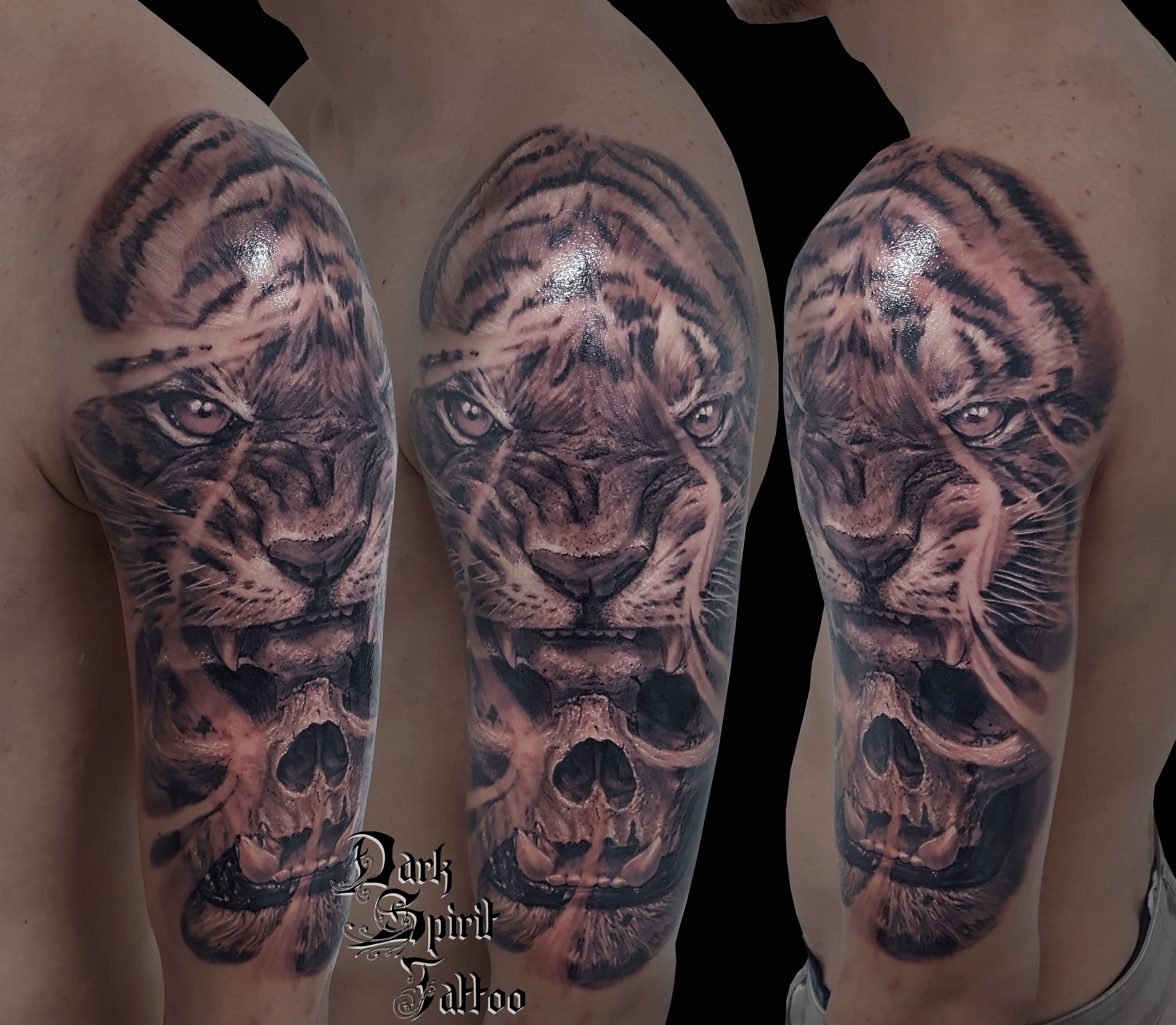 Tatouage 2 galerie tatouage - Tatouage tigre signification ...